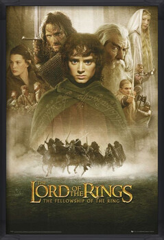 Kehystetty juliste LORD OF THE RINGS - fellowship