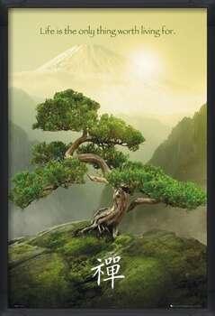 Kehystetty juliste Zen