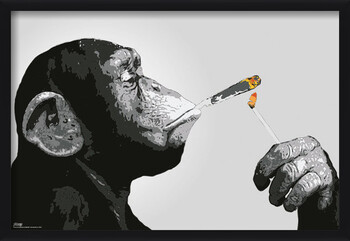 Kehystetty juliste Steez - Monkey Smoking