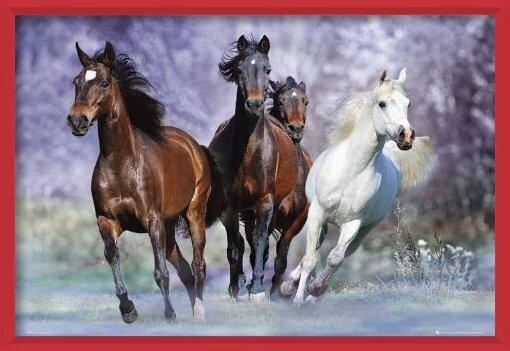Juliste  Running horses - bob langrish