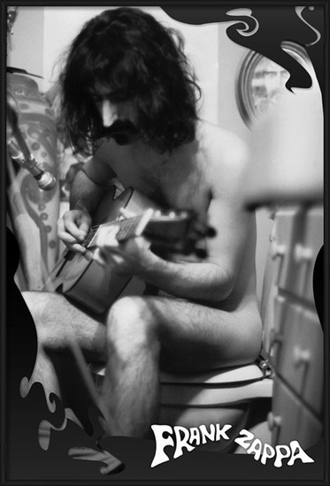 Juliste  Frank Zappa - guitar