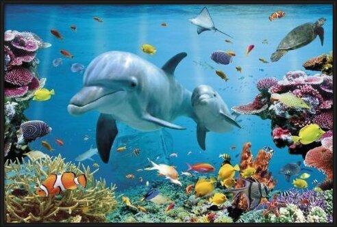 Juliste Tropical uderwater ocean