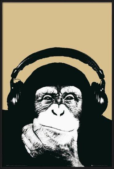 Juliste  Steez - monkey