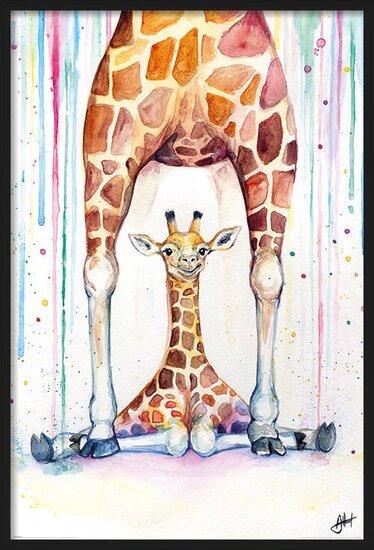 Juliste  Marc Allante - Gorgeous Giraffes